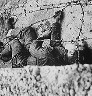 Boy killed at Berlin Wall
